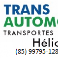 TRANSAUTOMOVEIS TRANSPORTE - Empresa de Transporte de Veiculos