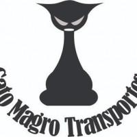 Gato Magro Transportes - Empresa de Transporte de Veiculos