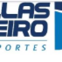 DELLAS RIBEIRO TRANSPORTES LTDA - Empresa de Transporte de Veiculos